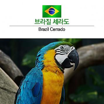 싱글오리진 브라질 세라도200g